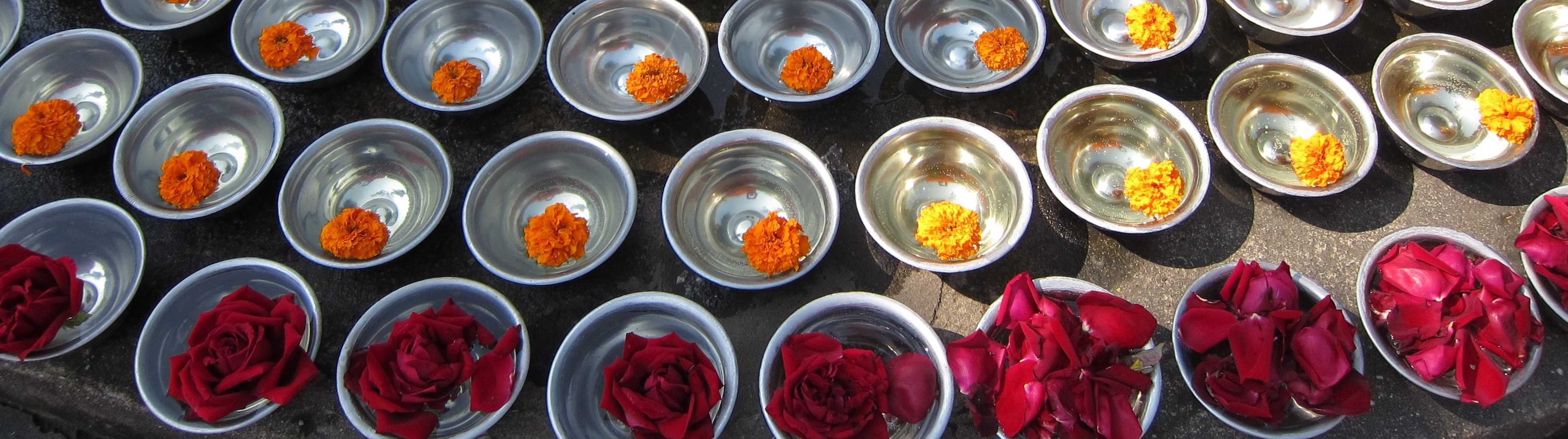 Flowers. Mahabodhi Temple, Bodhgaya, Bihar Chapter 1: The Ancestors